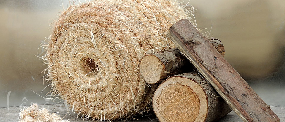 Lana de lemn - Partea ecologica